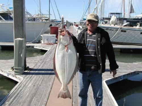 San francisco bay boat rental marine services fishing for San francisco fishing charters