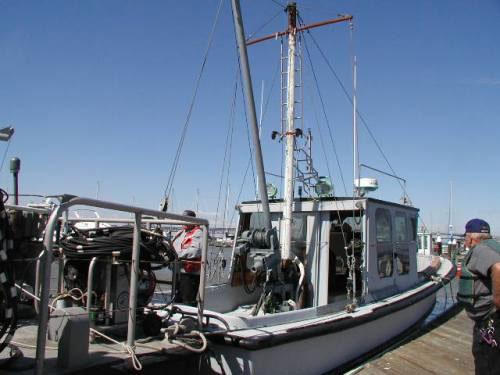 San francisco bay boat rental marine services fleet for Motor boat rental san francisco